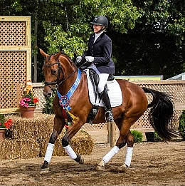 Anticipation Builds as First Invitations Are Issued for 2015 US Dressage Finals