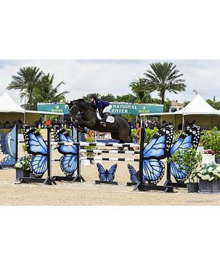 Equestrian Sport Productions Fall Series Continues with Top Sport and Grand Prix Competition