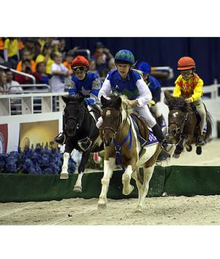 2015 WIHS Regional Horse Show Offers Competitors a Chance to Qualify for WIHS