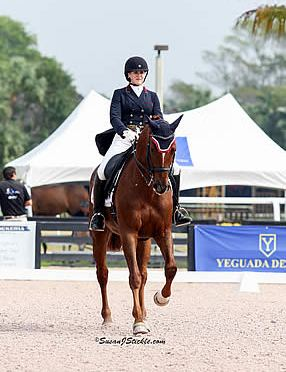 Excel Dressage Qualifies Multiple Horses for Regional Championships