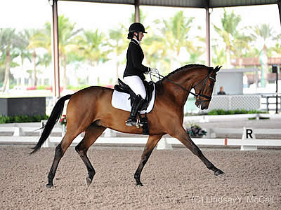 Two Official Paralympic Equestrian Qualifying Competitions in January 2016