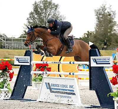 Ocala Winter Circuit II Continues with $2,500 Brook Ledge Open Welcome and $25k SmartPak Grand Prix