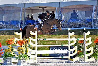 Marilyn Little Stacks $5,000 FEI Welcome Stake Leaderboard at HITS Ocala