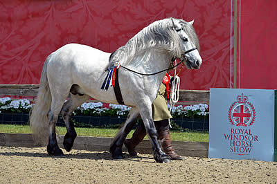 National Entries Now Open for Royal Windsor Horse Show 2016