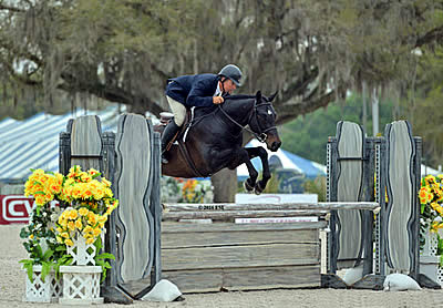 Hunters Go Big in the Final Week of the Ocala Winter Circuit