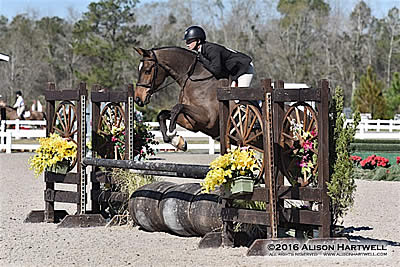 Sarah Young Returns to the Winner's Circle with Contemporary