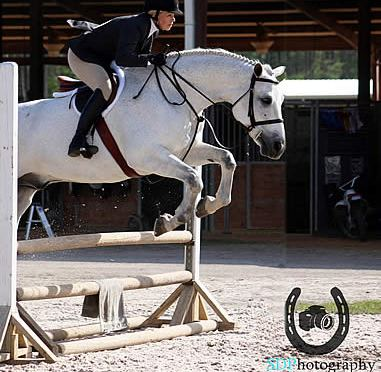 Jacksonville Equestrian Center Readies for Spring Classic II to Be Held This Weekend