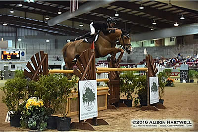 Lamontagne and Chanel du Calvaire Victorious in $35k Crescent Grove Advisors Grand Prix