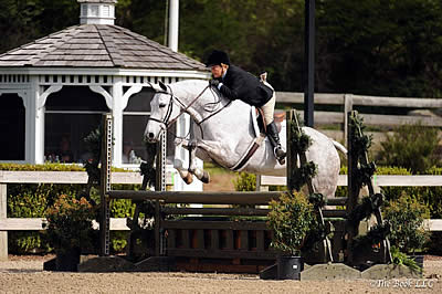 Ann Misenheimer and Cornerstone Claim Grand Adult Amateur Hunter Championship at Old Salem Farm