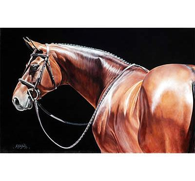 Sharon Lynn Campbell Named Official Artist of 2016 Capital Challenge Horse Show