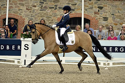 Germany Takes Almost Every Medal at FEI European Championships for Ponies