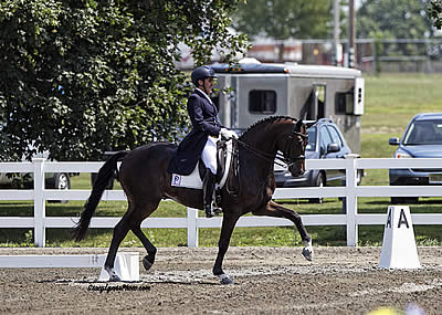 Piaffe Performance 84.8% Ready for Young and Developing Horse National Dressage Championships