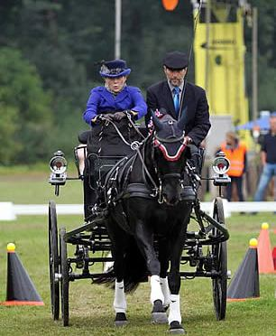 Putnam Finishes Fifth at 2016 FEI World Para-Driving Championships