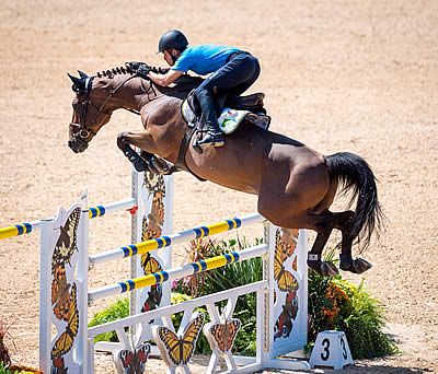 A Believer and the Horse of a Lifetime: Stephan Barcha (BRA) and Landpeter do Feroleto