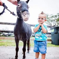 Mini humans and equines at the Childhood Cancer Awareness Celebration at Lands End Farm (Photo courtesy of Moonstruck Photography)