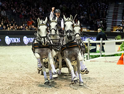 FEI World Cup Driving Enters Its 16th Season