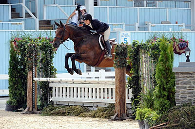 Lawrence Langer and Elizabeth Traband to Receive Top Awards at USEF Annual Meeting