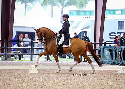 Steffen Peters Kicks Off AGDF 7 with a Win in FEI Prix St. Georges CDI 1*