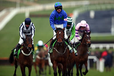 Horse Racing Cheltenham Festival Champion Hurdle – National Hunt Racing