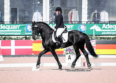 Final CPEDI 3* of the Season Concludes at AGDF