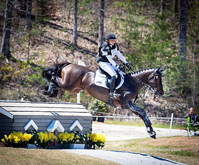Marilyn Little and RF Scandalous Lead from Start to Finish in FEI CIC 3* at The Fork