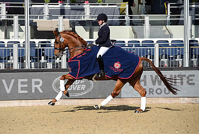 Sun Shines for Opening Day of Royal Windsor Horse Show