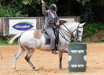 Interagro Lusitanos Highlight 2nd Phase of Brazilian Working Equitation Championships