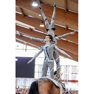 European Vaulting Championships for Seniors: Triple Gold for Germany, Italy Takes Pas de Deux