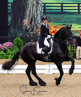 Festive Freestyles Featured on Third Day of 2017 US Dressage Finals