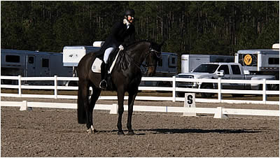 Dressage on the First Coast Kicks Off December Events at Jacksonville Equestrian Center