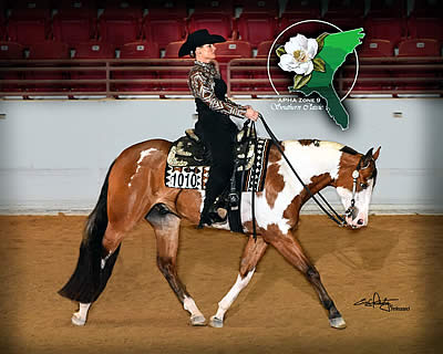 Jacksonville Equestrian Center Gets Splash of Paint during APHA Zone 9 Championship