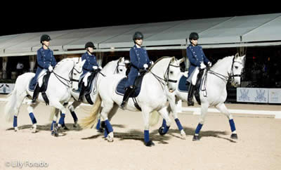 Discover Dressage Joins COTA to Advance Dressage While Fighting Breast Cancer