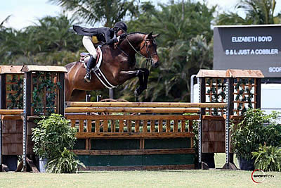 Liza Boyd and S&L Just A Cobbler Win $50k USHJA International Hunter Derby at WEF