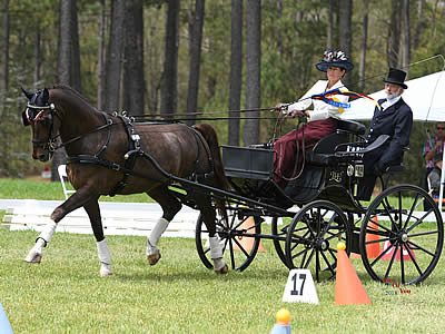 Hamilton and Makari Design Defend Their Title at Southern Pines CDE