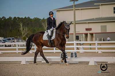 Dressage Is Tracking Up at the Jacksonville Equestrian Center