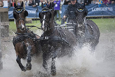Equestrian Driving Boosted with Allocation of Five Major Events