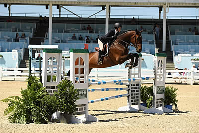 Washington International Horse Show Championship June Rankings Shake Up