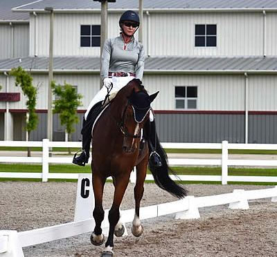 "First Coast Classical Dressage Brings Unique ""Showposium"" to Jacksonville Equestrian Center"