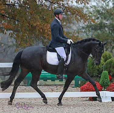 Kuhn Weathers the Storm to Win on Second Day of 2018 US Dressage Finals