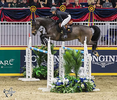 Nicole Walker Opens Royal Horse Show with a Win