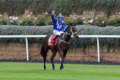 Winx Beats Justify in the 2018 Secretariat Vox Populi Award