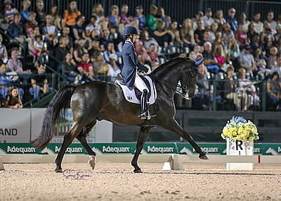 """Top Three at 80% Again in """"Friday Night Stars"""" FEI World Cup Grand Prix Freestyle"""