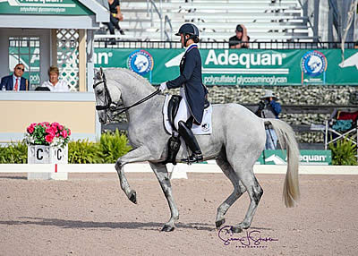 Adrienne Lyle and Harmony's Duval Win FEI Grand Prix Special CDI3* at AGDF