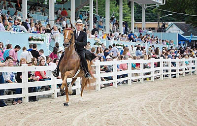 American Saddlebreds Set to Showcase Beauty and Versatility at 2019 Devon Horse Show