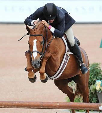 Daniel Geitner and One Request Granted $50k USHJA International Hunter Derby Win