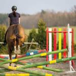 Gymnastic Exercises To Build A Better Show Jumper
