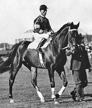 Phar Lap, with Jimmy Pike and Tommy Woodcock in 1930.  Museum Victoria