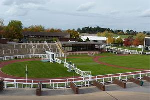 Winners' enclosure at Cheltenham, © Jongleur100