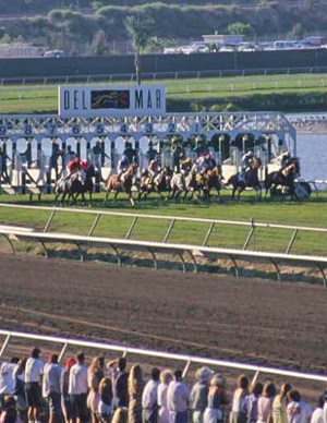 American racing has a culture of drugs and lax regulation, with high casualties - report.