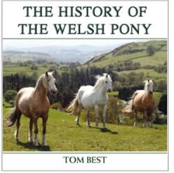 Welsh-Ponies